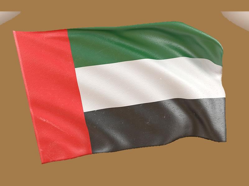 President, PM, UAE condemn NZ terror attack