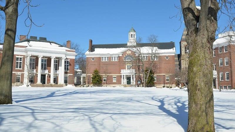 Harvard institute2