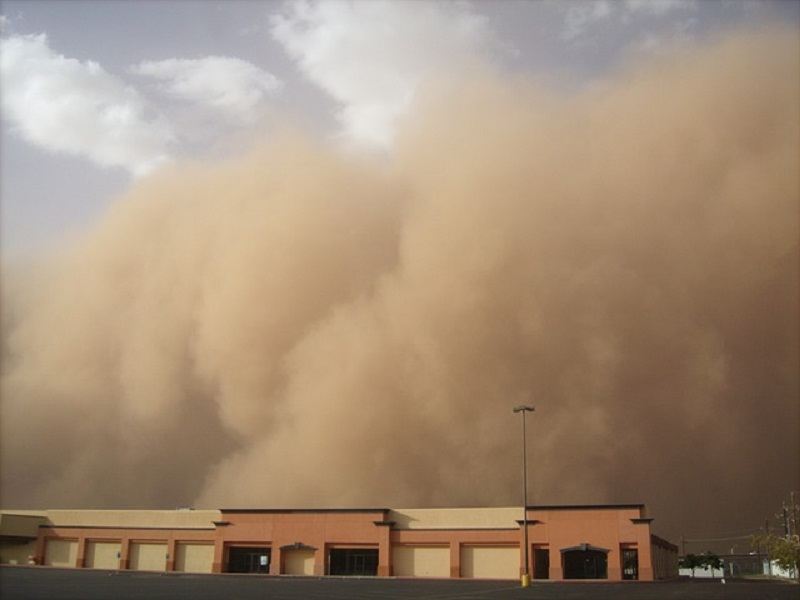 Dust storm, rainy in many locations cause widespread damage to crops in Sindh