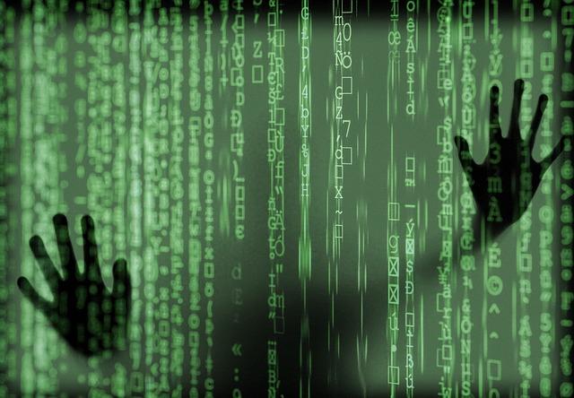 Senate group alarmed over providing information access to 'spy' organization