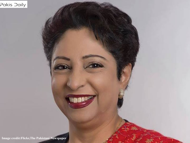 ملیحہ نے یو این ایس سی پر زور دیا کہ وہ کشمیر سے متعلق اپنی قراردادوں کے عزم کی تصدیق کرے۔