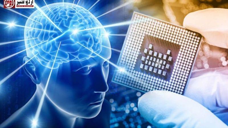کمپیوٹر-چپ-کو-جانور-کے-دماغ-میں-ڈالنے-کا-تجربہ