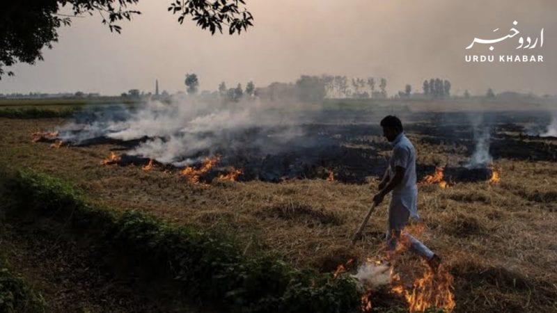 پنجاب-کی-فضائی-آلودگی