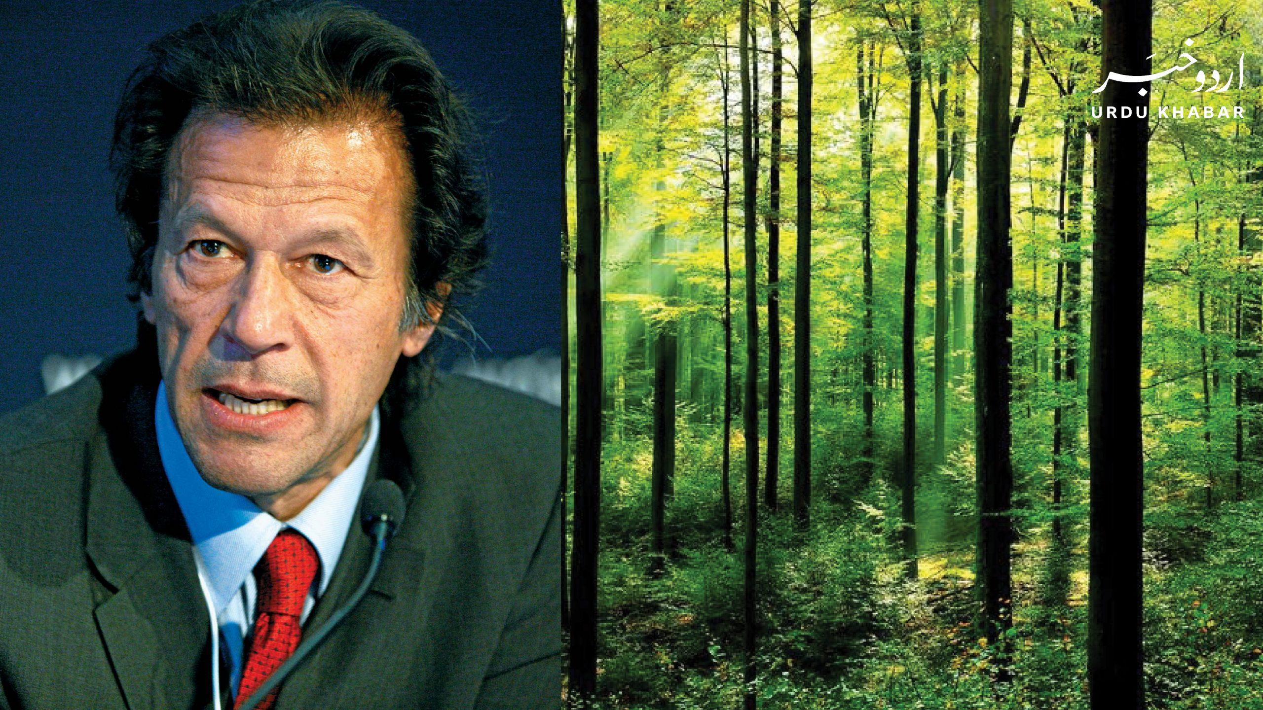 وزیر اعظم عمران کا لاہور میں میاواکی شہری جنگلات کے منصوبے کا افتتاح
