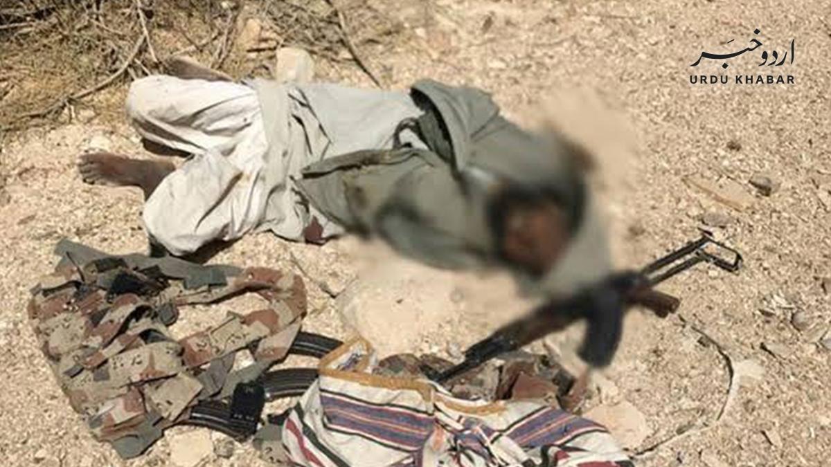 پاکستانی فورسز نے چار دہشتگرد مار ڈالے