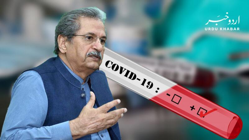 وزیر-تعلیم-شفقت-محمود