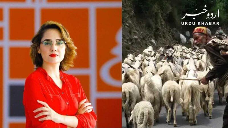 غریدہ فاروقی نے جانوروں کو گولیاں مارنے اور بر سلوک کرنے کے الزامات لگا دئیے