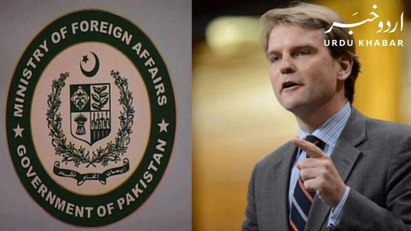 پاکستان کی سابقہ کینڈین وزیر کے بیان کی مذمت