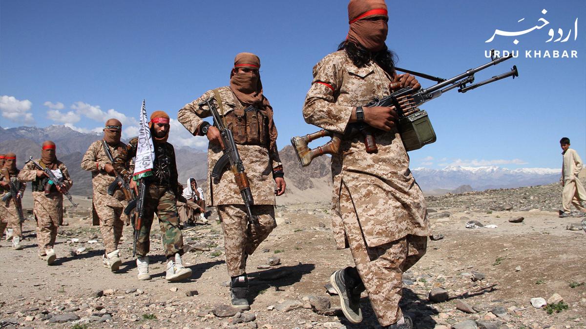 طالبان نے افغان حکومت کے ڈائریکٹر میڈیا سینٹر کو قتل کر دیا