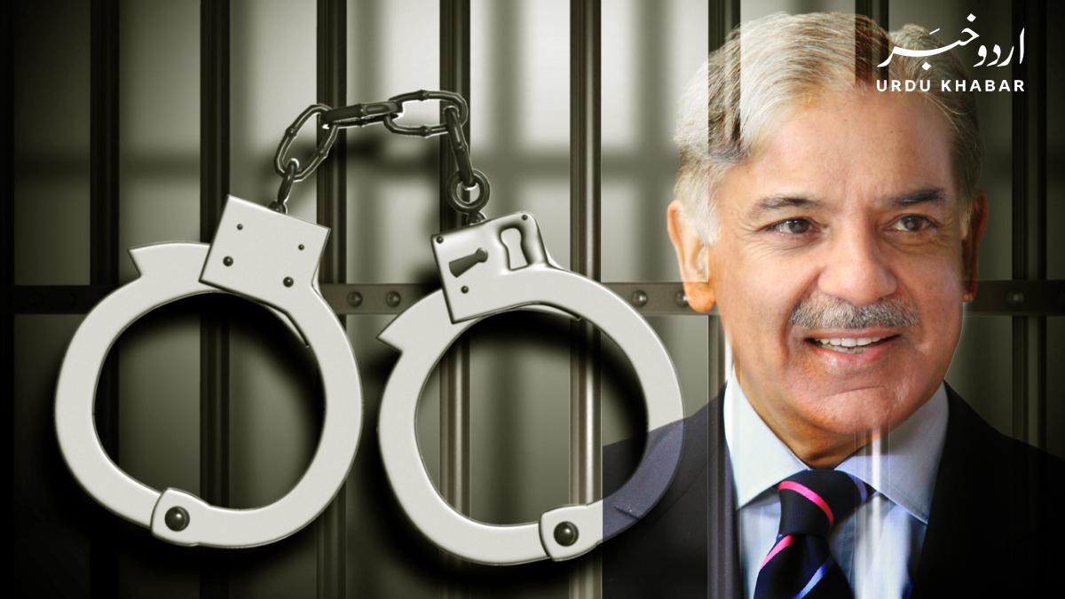 شہباز شریف کے جعلی بینک اکاؤنٹس کا اہم ملزم گرفتار